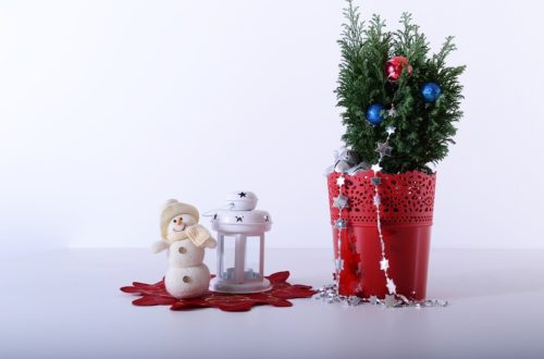 vánoční výzdobu domu